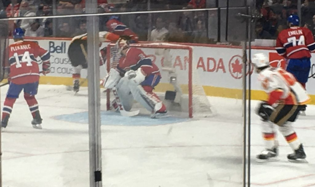 Carey Price in the net